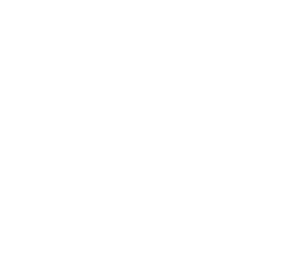 fondo_accion