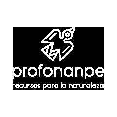 profonanpe1